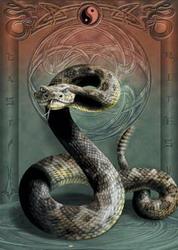 Змеиный яд — Википедия